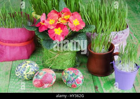 Potted plants and Easter eggs - Stock Photo