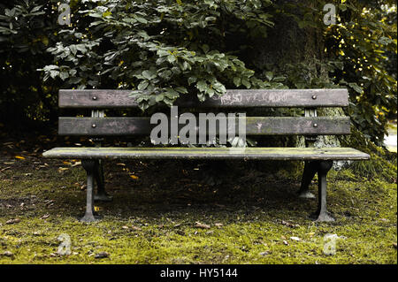 Old park-bench on the Ohlsdorfer cemetery in Hamburg, Germany, Alte Parkbank auf dem Ohlsdorfer Friedhof in Hamburg, - Stock Photo