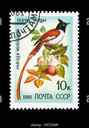Postage stamp from the Soviet Union depicting a  Indian paradise flycatcher (Terpsiphone paradisi) - Stock Photo
