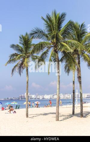 Brazil, Rio de Janeiro: Palm trees on the Leme beach on a sunny morning - Stock Photo