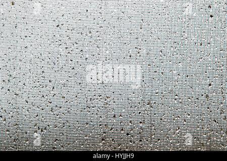 Close-ups of raindrops on a window glass & screen - Stock Photo