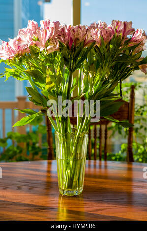 Alstroemeria; Peruvian lily; lily of the Incas in full bloom - Stock Photo