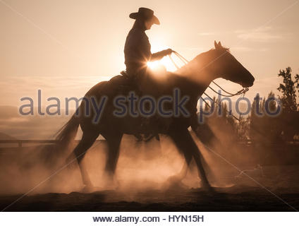 On a ranch in Petaluma, a cowgirl trains a horse at sunset. - Stock Photo