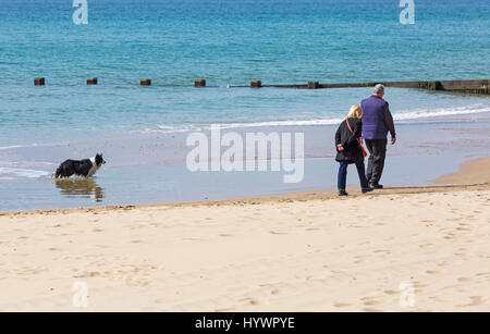 Bournemouth, Dorset, UK. 27th Apr, 2017. UK weather: sunny day at Bournemouth beach. Couple walking with dog along - Stock Photo