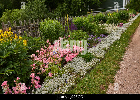 Flower garden in the estate of the mother of Pushkin: roses and other flowers of pink, white and yellow. - Stock Photo