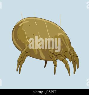 House dust mite. Microscopic bugs cause of allergies. Vector illustration - Stock Photo
