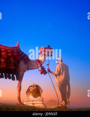 Camel and driver with the Sphinx and Chephren Pyramid in distance, Giza, Cairo, Egypt. - Stock Photo