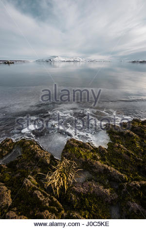 Ice on lake rocks at water's edge, Thingvallavatn, Iceland - Stock Photo