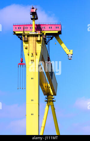 Goliath, one of Belfast's famous yellow cranes - Stock Photo