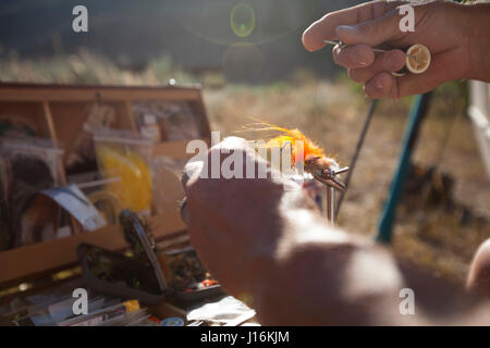 A Man consults the library and ties on a fly before a late afternoon fish on the Big Wood River near Ketchum Idaho. - Stock Photo
