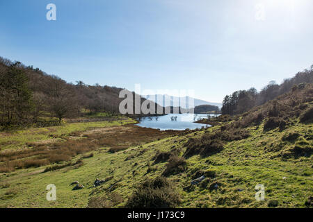 View of Llyn Cynwch with Cader Idris in the background.  Llyn Cynwch is a stocked fishing lake in the hills above - Stock Photo
