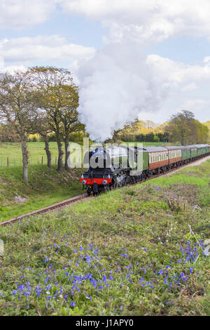Sheffield Park, East Sussex, UK. 19th April 2017. The Flying Scotsman makes its final journey from Sheffield Park - Stock Photo