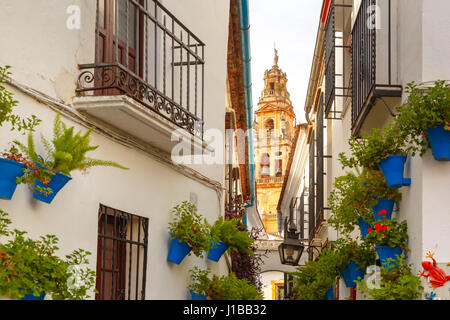 Flower street Calleja de las Flores Cordoba, Spain - Stock Photo
