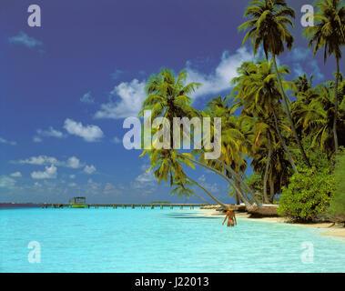 Kuda Bandos Island, Maldives Republic. - Stock Photo