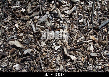 Wood chips background with vignette - Stock Photo