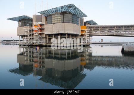 Oceanário de Lisboa - Lisbon Oceanarium - Lisbon, Portugal, Europe - Stock Photo