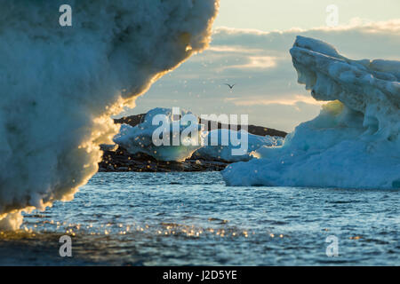 Canada, Nunavut Territory, Repulse Bay, Setting midnight sun lights meltwater dripping from grounded icebergs in - Stock Photo