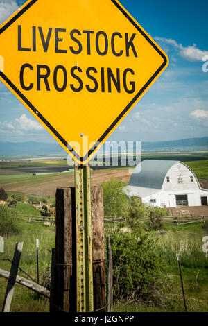 USA, Idaho, Columbia River Basin, Snake and Salmon River Basins, Camas Prairie, 'Livestock Crossing' sign and barn, - Stock Photo