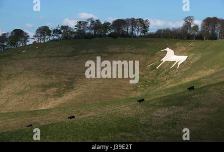 White Horse Hill Figure at Cherhill Wiltshire - Stock Photo
