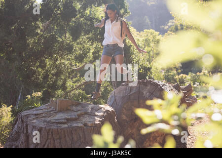 Young female hiker jumping from tree stumps in forest on sunny day - Stock Photo