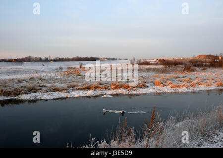River dry grass in the crystals of snow on the banks of a winter evening on zacateros - Stock Photo