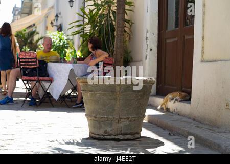 Street scene of plants, restaurant and a cat sleeping, Old Havana, Cuba - Stock Photo