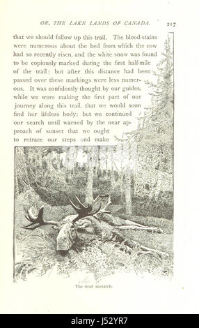 The Sportsman's Paradise; or, the Lake Lands of Canada ... With illustrations by D. C. and H. Beard. Second edition - Stock Photo