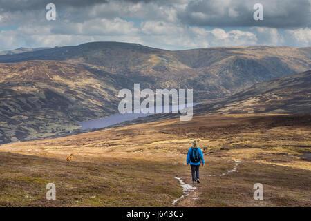 A walker approaches Loch Callater on the descent from the mountain of Creag Nan Gabhar near Braemar, Aberdeenshire, - Stock Photo