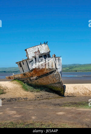 Front view of an abandoned ship at Inverness, Point Reyes National Seashore, Marin County, California, USA, on a - Stock Photo