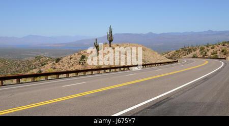 usa america arizona cactus southwest street road drive travel desert wasteland - Stock Photo