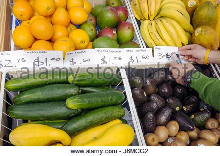 Miami Beach Florida 22nd Street Collins Park Sunday Market produce cucumber avocado - Stock Photo