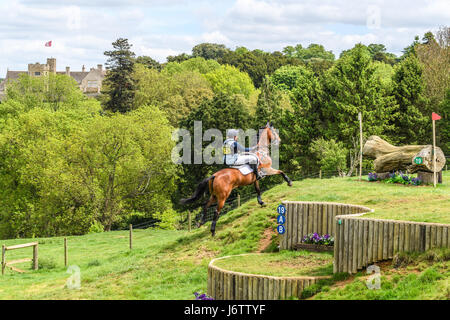 Rockingham Castle, Corby, UK. 21st May, 2017. Sarah Hedges and her horse Animagus run uphill towards a log obstacle - Stock Photo