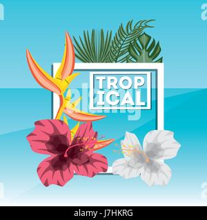 tropical concept with beautiful and colorful flowers - Stock Photo