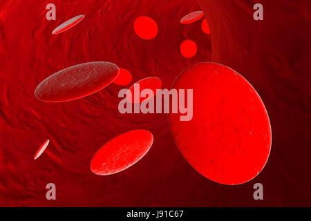 macro, close-up, macro admission, close up view, medicinally, medical, - Stock Photo