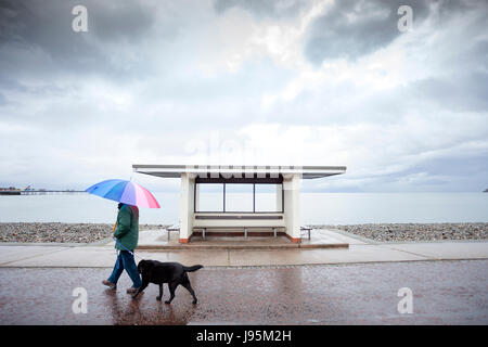 A man walking his dog past a coastal shelter along a wet seafront promenade carrying a multicoloured umbrella for - Stock Photo