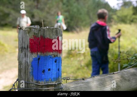 humans, human beings, people, folk, persons, human, human being, walk, go, - Stock Photo
