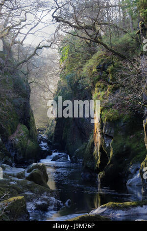 The delightful Fairy Glen, near Betws y Coed - Stock Photo