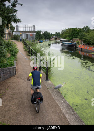 London, England - July 15, 2016: A cyclist passes a heron on the Grand Union Canal towpath at Ladbroke Grove in - Stock Photo