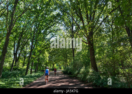 Cyclists on a path in the Tiergarten, Berlin, Germany - Stock Photo