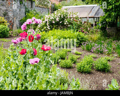 The delightful charm of the rustic walled garden at Wiveton Hall, Norfolk, - Stock Photo
