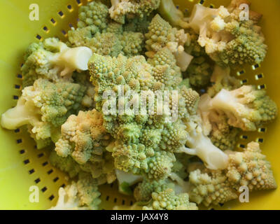 Romanesco Broccoli aka Romanesque cauliflower with natural fractal fibonacci spiral structure - Stock Photo