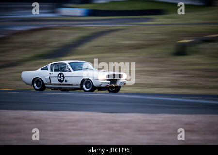 Sydney Motorsport Park, 10th June 2017.  Group S race of Forpark Australia with Darryl Hansen in the Shelby. Anthony - Stock Photo