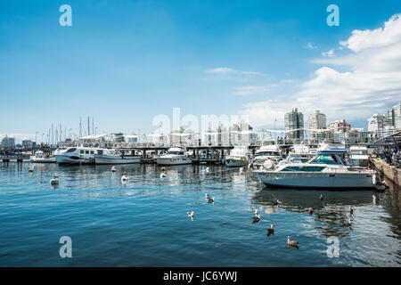 Punta del Este, Uruguay, February 29, 2016 - Yachts of the rich people in Punta del Este harbor, Uruguay - Stock Photo