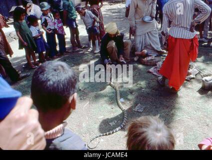 Reportage Nepal 1980. Pokhara, snakes enchanter - Stock Photo