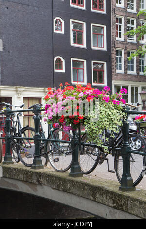 Bridge over canal in Amsterdam. Bicycles are standidg on the bridge. The bridge is decorated with flowers. All potential - Stock Photo