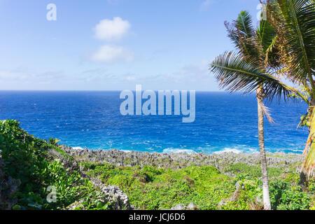 Natural color layering of green vegetation, grey rugged and jagged coastal feature of coral along Togo Chasm coast - Stock Photo