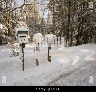 Three mailboxes in a row, in snow covered rural setting  ontario canada winter cold 2017 snow - Stock Photo