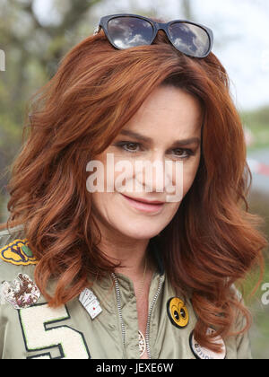 Singer Andrea Berg - Stock Photo