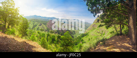 path to Ella Rock in Sri Lanka - Stock Photo