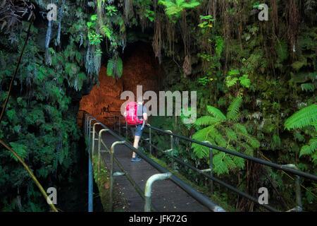 Hiker on bridge at entrance to Thurston Lava Tube. Hawaii - Stock Photo